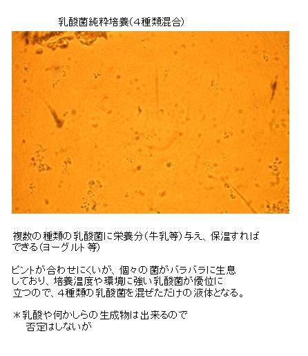 B2015-47-1.jpg