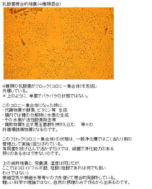 B2015-47-4.jpg