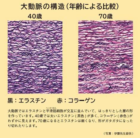 B2015-59-1.jpg